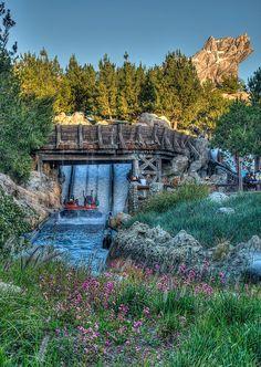 Disney Gallery - Disneyland Resort Photos