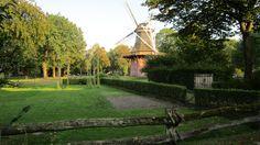 Im Kurpark in Bad Zwischenahn steht dieser wunderschöne Galerieholländer. Angestrahlt im warmen Herbstlicht mit dem Hopfengarten vorweg, gefällt mir die Mühle am besten.