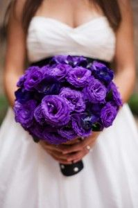 Purple ranunculus wedding bouquets -- love it. You could even add the other wedding colors in this if you wanted.