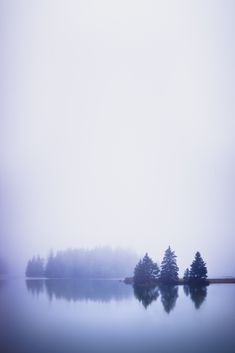 'Bring in the Fog', United States, Maine, Deer Isle, Deep Hole