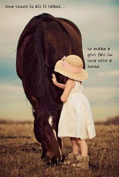 """One touch is all it takes ... to make a girl fall in love with a horse."""