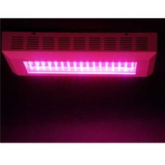 Rectangle Grow LED Lights For Hydroponic Systems Growing 1w Led, Led Aquarium Lighting, Light Panel, Hydroponics System, Led Grow Lights, Growing Plants, Indoor, Neon Signs, South Africa