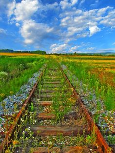 ♂ Aged with Beauty Forgotten old rail road covered with green grass path to unknown