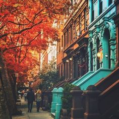 This time of year… . . Autumn, Upper West Side, New York...