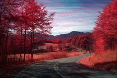 North Carolina... fall
