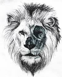 how to draw a lion skull - Google Search