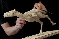 terror birds has hands? - Buscar con Google