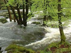 Clappersgate . . . the River Brathay in spate . . .