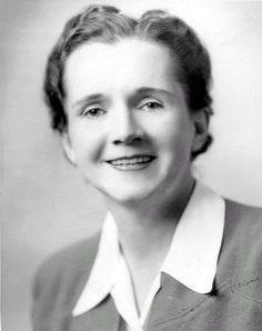 Rachel Carson, Environmental Crusader