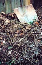 Create Your Own Compost Pile: Before you begin composting, you should understand the composting process. View what materials to compost and what materials not to compost and read up on the science behind composting about which variables must be controlled during composting.