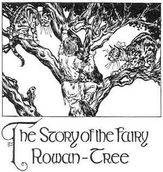 The King of Ireland's Son: The House of Crom Duv: The Story of the Fairy Rowan Tree