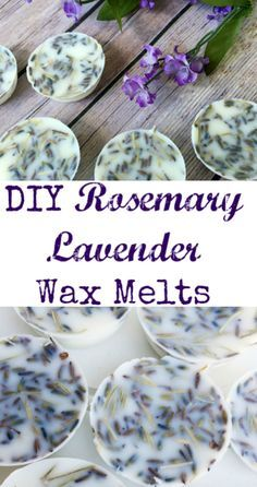 Tip Tuesday: Rosemary Lavender Wax Melts These look amazing. Love the scents of rosemary and lavender together.These look amazing. Love the scents of rosemary and lavender together. Homemade Candles, Homemade Gifts, Scented Candles, Lavender Candles, Jar Candles, Natural Candles, Aromatherapy Candles, Lavender Scent, Lavender Crafts