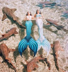We LOVE this amazing repost from ! It is a fantastic example of what our full silicone tails and fabric tails look… H2o Mermaids, Real Life Mermaids, Fantasy Mermaids, Unicorns And Mermaids, Mermaids And Mermen, Mermaid Names, Fin Fun Mermaid, Mermaid Swimming, Mermaid Art