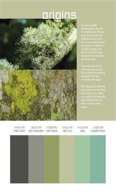 Autumn/Winter 2014/2015 Color and Textile Trends by Spin Expo