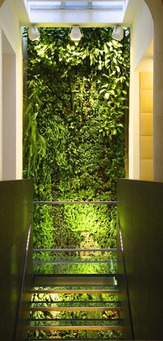 Find out all photos and details of Indoor, France on Archilovers. Browse the complete collection of pictures and design drawings Vertical Green Wall, Vertical Garden Design, Vertical Gardens, Wall Design, House Design, Garden Screening, Porches, Plant Wall, Sustainable Architecture
