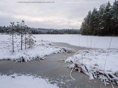 Nuuksion kansallispuisto 7.12.201312:15. Iso-Holma. Lake Iso-Holma,Nuuksio National Park.