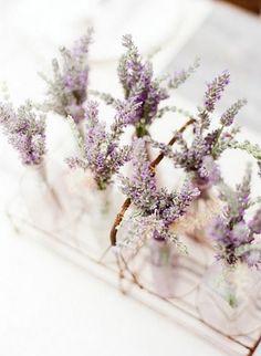 pots of lavender spring wedding favors ideas