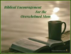 Biblical encouragement for overwhelmed moms. How I am using the You Version Bible App to soothe my broken soul with short devotionals. Christian Homemaking, Christian Parenting, Overwhelmed Mom, Broken Soul, Bible App, Inspire Me, Activities For Kids, Confidence, Encouragement