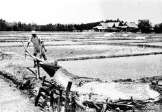 Zoutwinning te Bonthain, Zuid-Celebes. 1948 Dutch East Indies, Makassar, Old Pictures, Outdoor, Outdoors, Antique Photos, Old Photos, Outdoor Games, The Great Outdoors