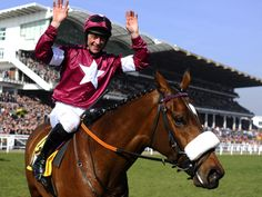 Davy Russell and Tiger Roll after winning at Cheltenham. Horse Racing Books, Horse Racing Betting Tips, Race Horses, Irish Racing, Races Fashion, Grand National, Proud Of You, Equestrian, Riding Helmets
