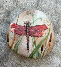 Red Dragonfly painted on a rock