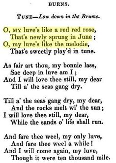 "Robert Burns ~ ""O, My luve's Like A Red Red Rose."" Beauty in a poem. He and Arnold are probably my favorite poets."