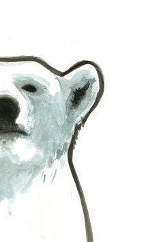 Polar bear by illustrator Jamie Wignall - love this guy!