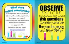 What Does a Good Scientist Do?  Bright and colourful six piece science process skills poster set (observe, infer, predict, experiment, investigate, and analyze).  Each poster uses key words and phrases to help students understand and apply each skill.  www.teachingrocks.ca