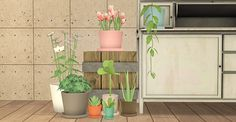 "⌦ Download I (file size 3.0MBs) ⌦ Download II (file size 8.3MBs) ""I. 32 SimplyStyling's plants repotted, recolored, and repositoried. You can't have these & the originals in your game. Don't delete..."