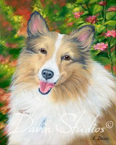 Sheltie Dog pet portrait art print of original oil by davinstudios