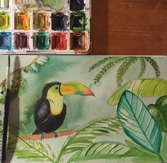Toucan #artwork #aquarelle #watercolor #toucan #urbanjungle #jungle #leaves #tropical #tropicalleaves #bird #illustratie #illustrator #illustration #illustrating #instaart #instadraw #instapaint #instaartist #instasketch #drawing #paint #painting #painter #beak #paper #artistic #artist #green