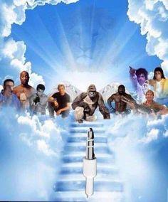 This Billy Mays, Tupac, Muhammed Ali, Paul Walker, Harambe, Apple headphone jack, Cecil the Lion, Kimbo Slice, Steve Irwin, Prince, Michael Jackson tribute.