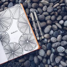 "297 Me gusta, 18 comentarios - j ✨ (@junjournals) en Instagram: ""going fruity this august . . . . . #bulletjournal #bujo#bujocommunity…"""