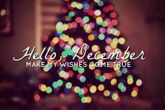 Hello, December make my wishes come true.