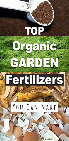 Garden Landscaping Terraces Top Organic Garden Fertilizers You Can Make! Want to make your own organic fertilizer for your garden? Check out how easy it is! Use banana peels, egg shells, coffee grinds, grass clippings!