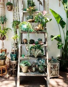 Des plantes sur ma terrasse : 20 idées faciles à copier ! - Elle Décoration