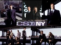 This CSI franchise would not be exciting if not because of Mac Taylor's charm. He makes the character as cool as can be. Gary Sinise is so great. I love him...