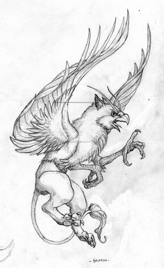 Griffon by willowWISP on DeviantArt Animal Sketches, Art Sketches, Art Drawings, Magical Creatures, Fantasy Creatures, Griffon Tattoo, Griffin Mythical, Persian Tattoo, Desenho Tattoo