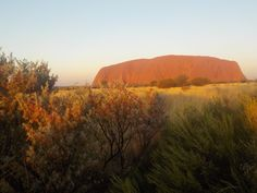 Uluru at Sunset, Australia Personal Photo, Australia, Mountains, Sunset, Nature, Travel, Sunsets, Viajes, Traveling