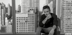 Liam || One Direction - Perfect Music Video