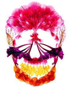 押し花アート写真集『flora』- 多田明日香が美しい花々の世界で彩る鮮やかな骨格の写真3
