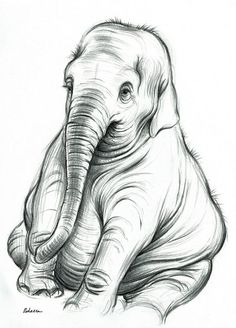 BIG BABY – Original charcoal pencil drawing of a baby elephant by Rebecca Rees BIG BABY – Original charcoal pencil drawing of a baby elephant by Rebecca Rees Pencil Drawings Of Love, Pencil Drawings Of Animals, Pencil Drawing Tutorials, Animal Sketches, Easy Drawings, Drawing Sketches, Charcoal Drawings, Sketching, Drawing Designs