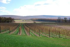 Lehigh Valley Wine Trail Provides the Perfect Backdrop for the Perfect Weekend