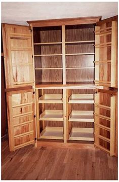 Pantry Cabinet Free Standing, Pantry Storage Cabinet, Pantry Cupboard, Kitchen Storage, Cupboard Ideas, Pantry Ideas, Food Storage, Free Standing Kitchen Cabinets, Kitchen Refacing