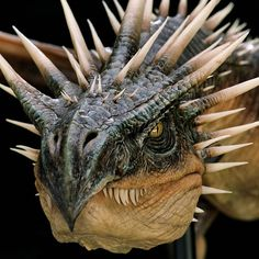 In the Harry Potter films, the Hungarian Horntail was a life sized model of 40 feet long and a seventy foot wingspan! It could belch real fire up to 30 feet. Hogwarts, Slytherin, Harry Potter Tattoos, Harry Potter Film, Fantasy Dragon, Dragon Art, Hermione Granger, Magical Creatures, Fantasy Creatures