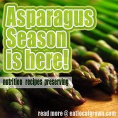 Tender delicious stalks of asparagus are appearing in gardens and farmer's markets across North America right now. Heres some great information on this great vegetable!