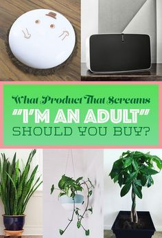 """What Product That Screams """"I'm An Adult"""" Should You Buy?"""