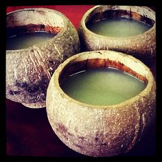 Kava party! Thanks to our friends at Eugene Magazine!