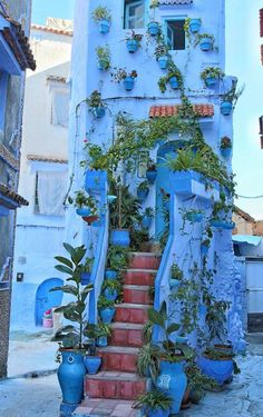 Chefchaouen The Blue Pearl, Morocco
