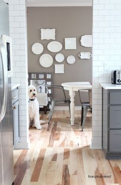 white plates look amazing on a muted gray wall..